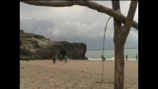 La Grande Côte - Bord de mer Pins de Charente-Maritime Royan