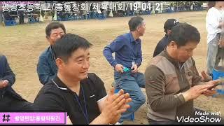 평광초등학교/총동창회/체육대회/19-04-21/촬영편집…
