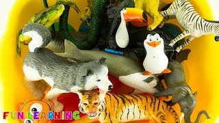 Wild Zoo Animals Toys Names For Kids Learning Fun Colors Educational Video