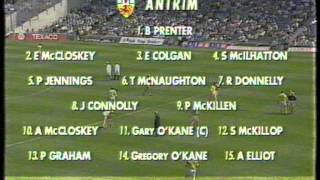 All Ireland Hurling Semi Final 1996 (1 of 7)