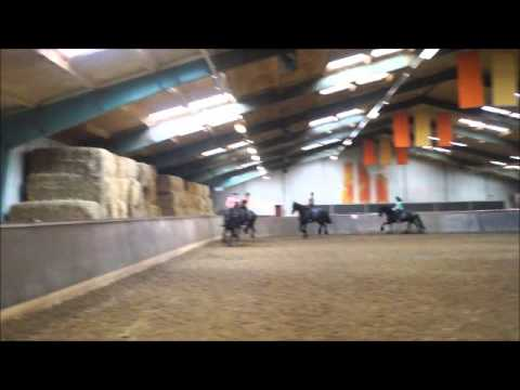 VIDEO: Mean's eerste F proef in manege de Veenhoeve