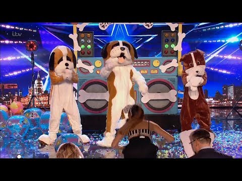 Britain's Got Talent 2019 Disco Dogs Surprise Full Audition S13E08 Mp3