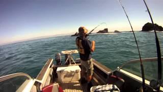 Fishing Fiordland