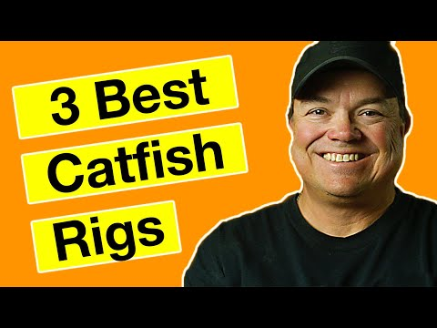 3 Best Catfish Rigs & How To Tie Them