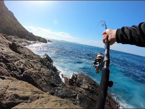 WHAT A DAY | MONSTER FISH OFF THE ROCKS
