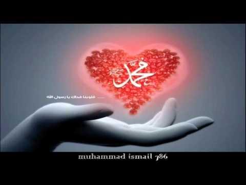 Shaykh Ahmed Ali - Love For The Prophet