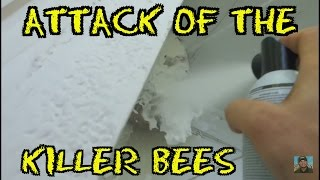 "(Episode#24) Attack of the ""KILLER BEES"""