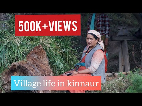 || Village life in Kinnaur || Himachal Pradesh