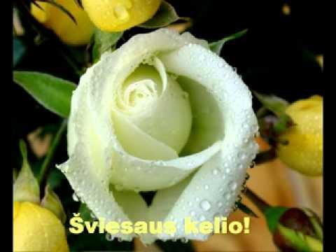 Su Jūsų švente, mielosios! Su kovo 8 -ąja! .avi