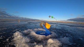 Расставили жерлицы в незнакомом месте и началось Зимняя рыбалка на жерлицы Первый лед 2019 2020