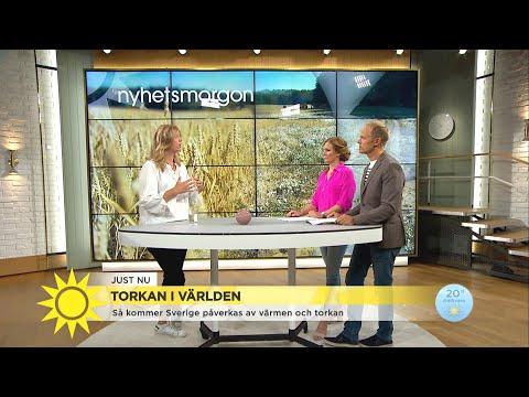 Så kommer Sverige påverkas av värmen och torkan - Nyhetsmorgon (TV4)