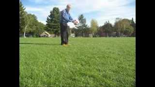 футбольные финты уроки