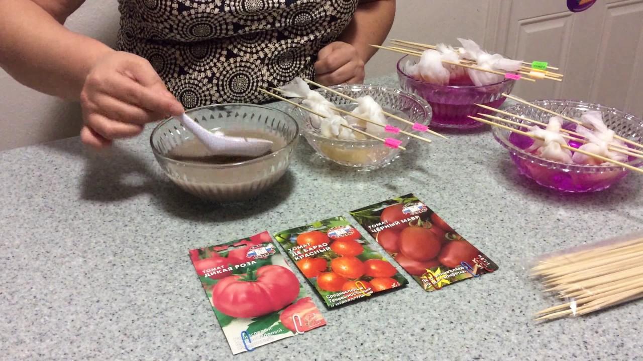 солевой раствор для семян томатов