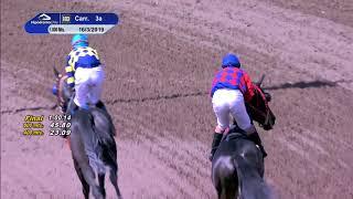 Vidéo de la course PMU PREMIO TAN REY