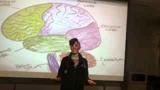 Sympathetic and Parasympathetic Nervous System fun, fast, and painless for nursing students.