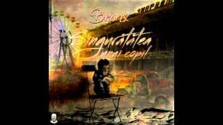 BR0NX - Amandoua (Alex &amp Siminel)