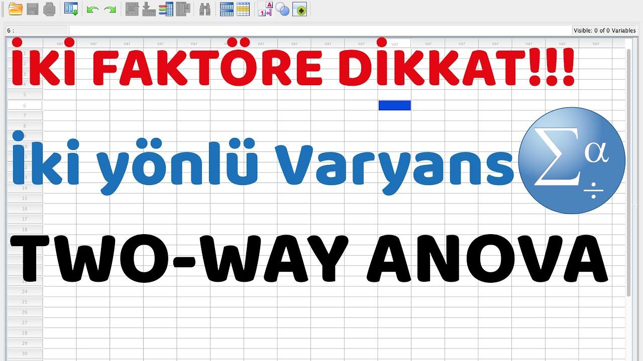 #20 SPSS programında iki yönlü ANOVA analizi (Two way ANOVA test)