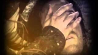 Смотреть клип Fleur - Лунные Лилии