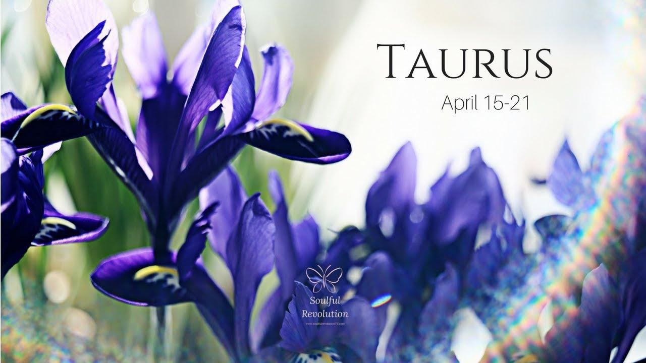 Say I Love You Taurus April 15 21 Youtube