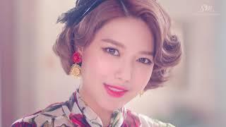 소녀시대(Girls' Generation) - Lion Heart