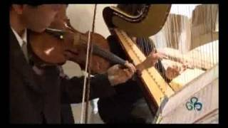 Flauto arpa quartetto d'archi violino musica per matrimoni wedding planner Roma