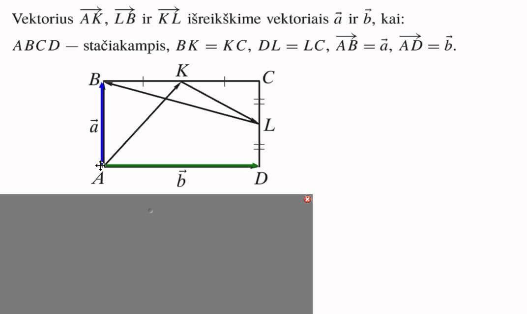 lieknėjantis kūno vektorius