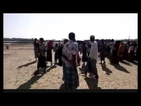 Rohingya Face Ethnic Cleansing