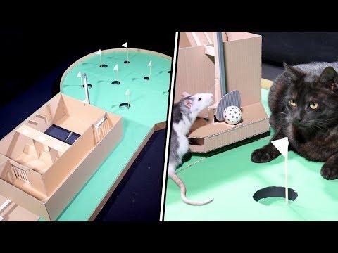 ANIMALS play MINI GOLF