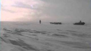 Dog Sledge on the Greenland Ice Sheet.