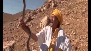Chasseurs de serpents dans le désert du Maroc | عيساوي