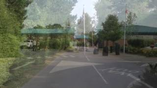 Oakdene forest holiday park Hampshire
