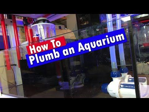 How To Plumb An Aquarium Tank And Sump - Reef Tank Plumbing!