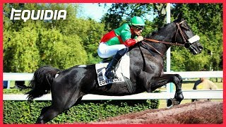 Vidéo de la course PMU PRIX DE BEAUNE