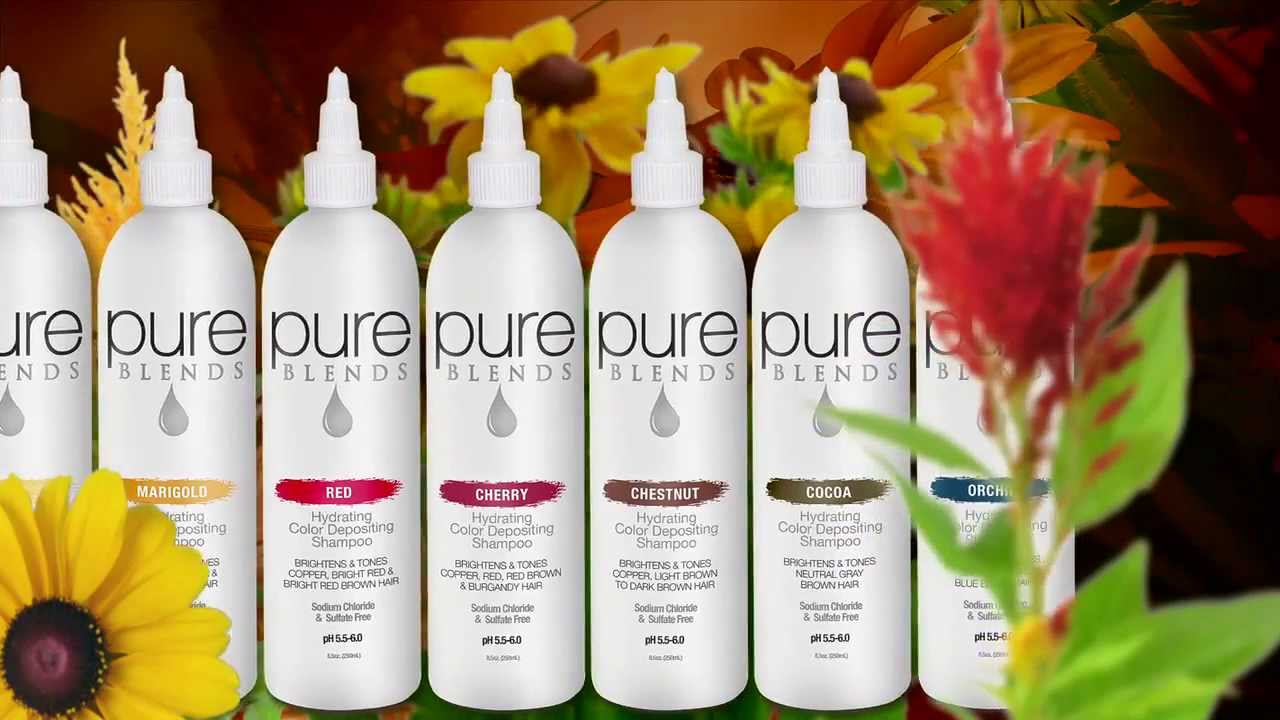 PURE BLENDS Fade Prevention & Color Correction System