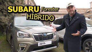 AL VOLANTE del PRIMER HIBRIDO de SUBARU, el FORESTER HYBRID: ¿Es Subaru la nueva Volvo?