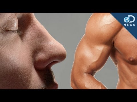 Big Noses for Big Muscles!