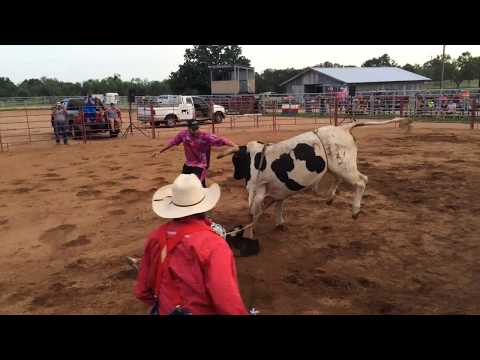 Swagger Jagger The Bull Broken G Rodeo Co