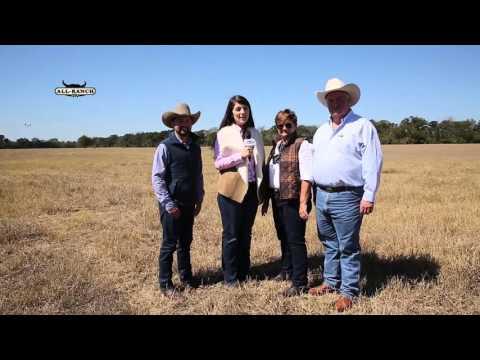 ALL RANCH TV - Santa Elena Ranch Texas