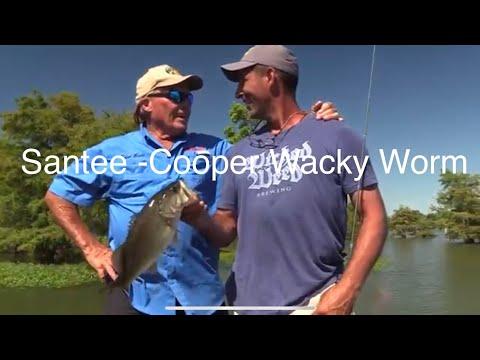 Santee-Cooper Wacky Worm Bass