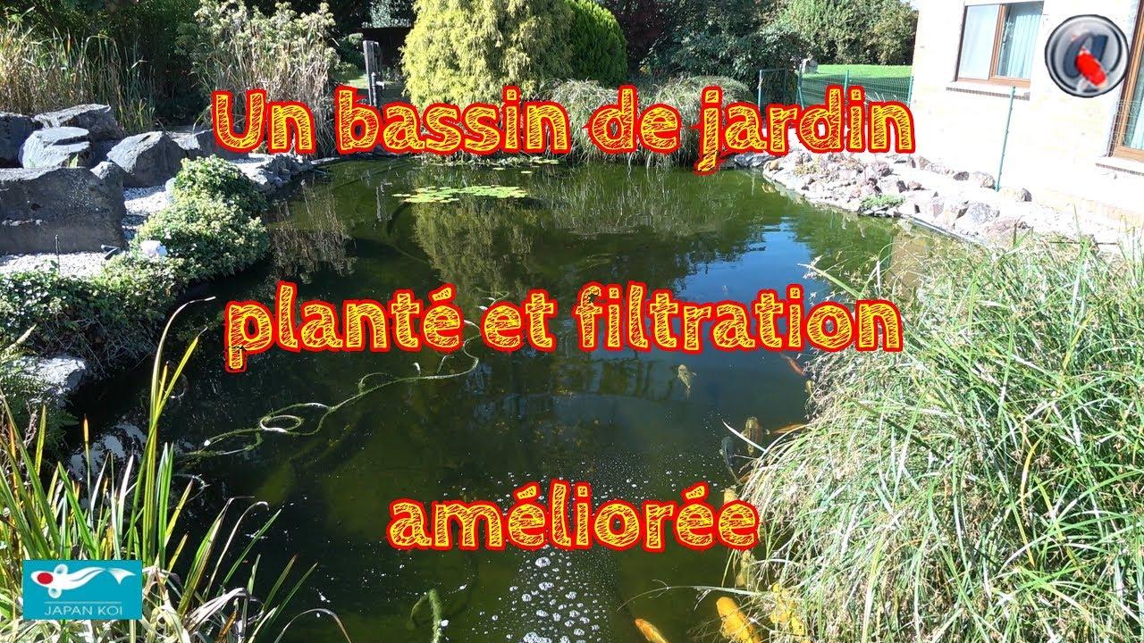 Un Bassin De Jardin Plante Et Filtration Amelioree