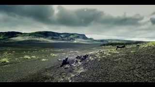 Die Schönheit der Schöpfung | Soll das alles Zufall sein? (Der Film - Preview in Full HD)