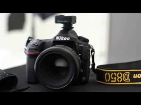 Nikon D850: First hands-on test with Cine Photo Tools- Cape Town, South Africa