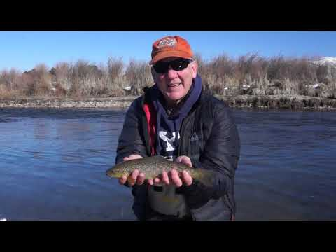 Learn How To Fish Midges Accross Current