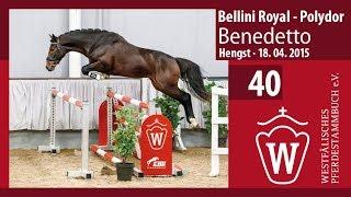 40 Benedetto Hengst v. Bellini Royal - Polydor