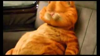Garfield 2 trailer HQ