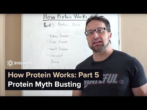 How Protein Works Part 5: Protein Myth Busting