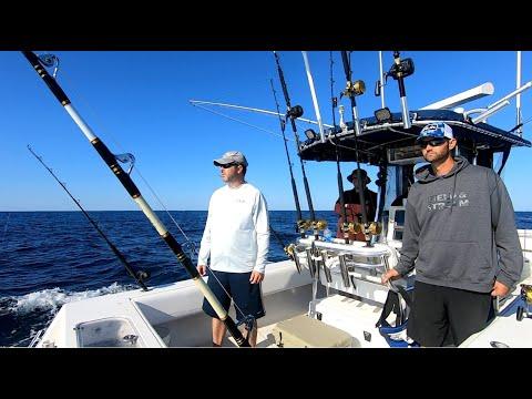 MONSTER Yellowfin TUNA - Offshore fishing tournament - Chincoteague VA  Washington Canyon - Deep Sea