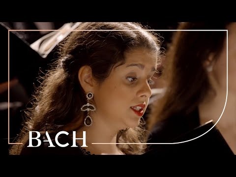 Bach - Motet Jesu, meine Freude BWV 227 - Prégardien | Netherlands Bach Society