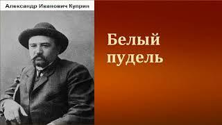 Александр Иванович Куприн.  Белый пудель. аудиокнига.