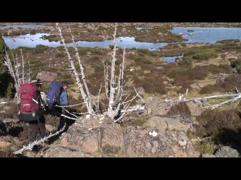 Tasmania - Central Plateau Walk (Part 1)